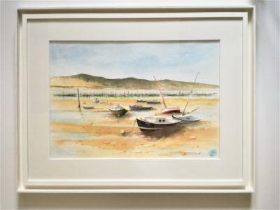 Pinasses et bateaux devant la Dune