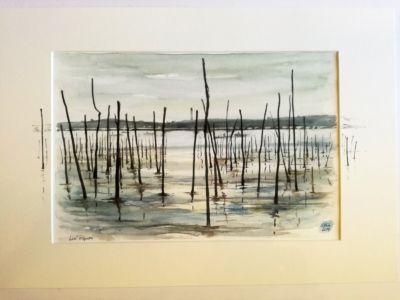 Les pignots Bassin d'Arcachon